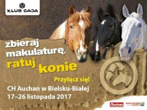 ratuj konie
