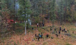 100 drzewek na 100-lecie odzyskania niepodległości